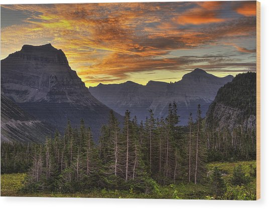 Logan Pass Sunrise Wood Print