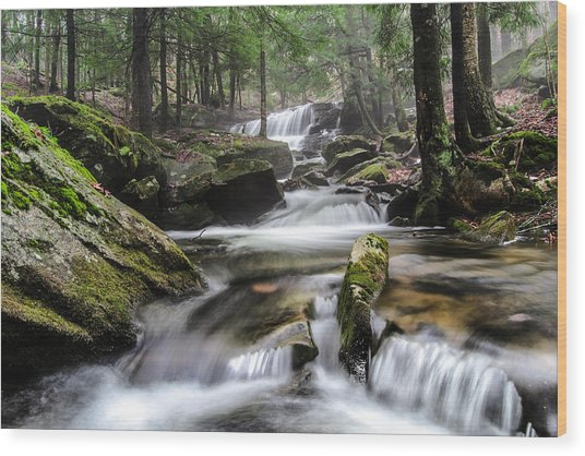 Logan Run Waterfall 4 Wood Print