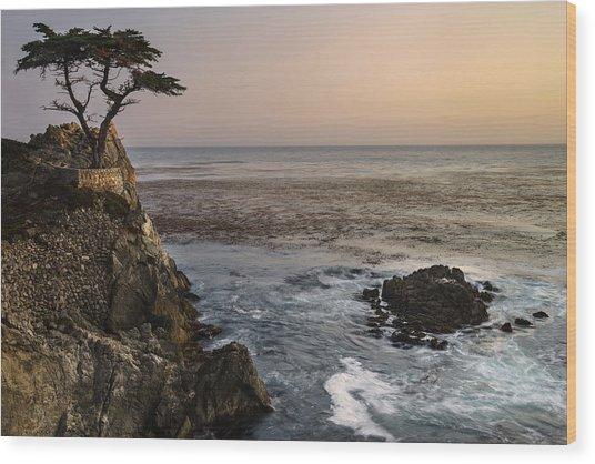 Big Sur - Lone Cypress Wood Print