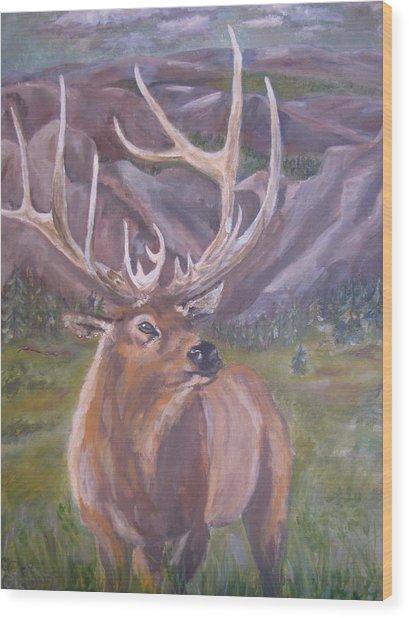 Lone Elk Wood Print by Caroline Owen-Doar