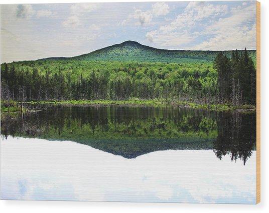 Lone Lake Wood Print by Andrea Galiffi
