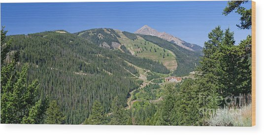 Lone Mountain Valley Wood Print