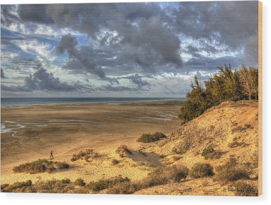 Lone Stroller On A Vast Beach Under Dramatic Sky Wood Print