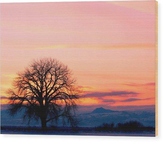 Lone Tree 1 Wood Print by Rebecca Adams