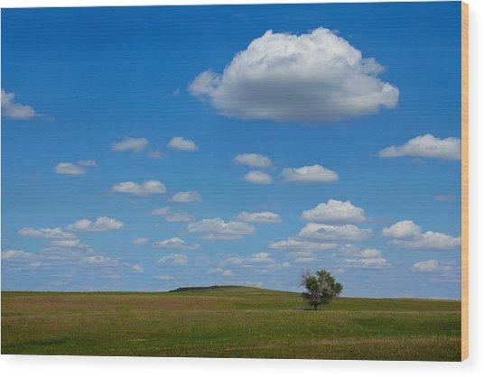 Lone Tree Bluff Wood Print