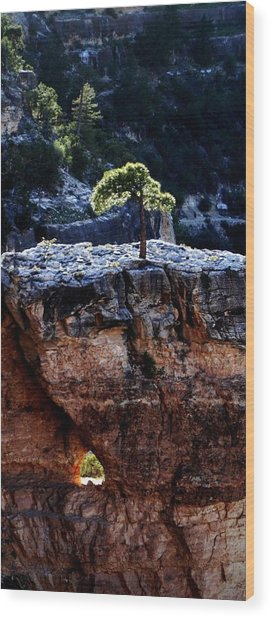 Lone Tree Heart Wood Print by Alfredo Martinez