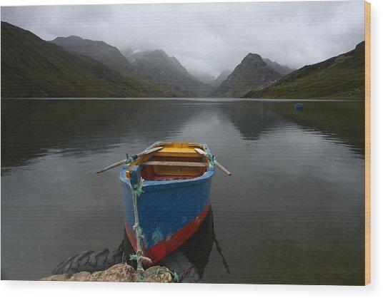 Lonely Boat Wood Print by Dan Breckwoldt