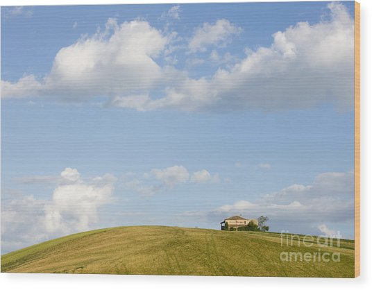 Lonely House Wood Print