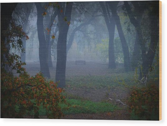 Lonely Park Bench In The Fog Wood Print