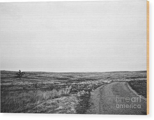 Lonesome Highway No.1 Wood Print