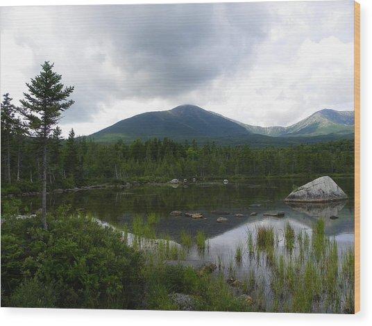 Lonesome Pine At Sandy Stream Pond Wood Print