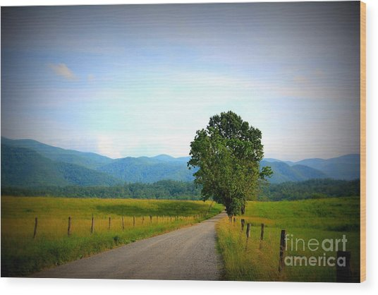 Sparks Lane Cades Cove Wood Print