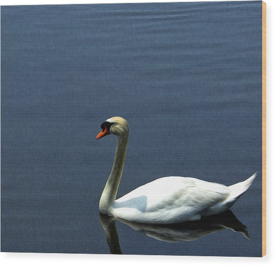Lonesome Swan Wood Print