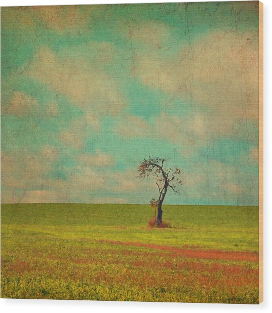 Lonesome Tree In Lime And Orange Field And Aqua Sky Wood Print