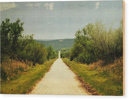 Long And Lonely Road Wood Print by Mikki Cromer