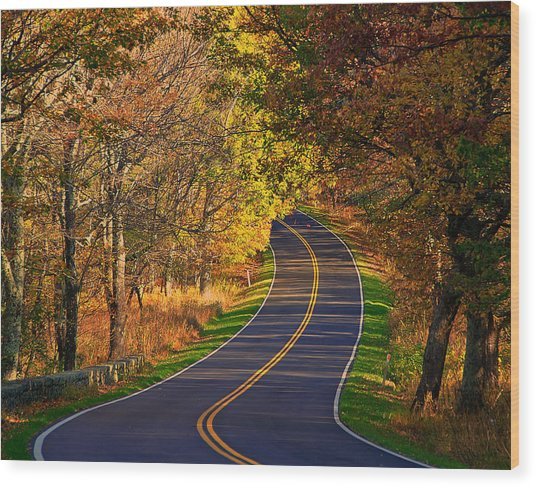 Long And Winding Road Wood Print by Kathi Isserman