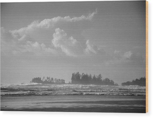 Long Beach Landscape  Wood Print