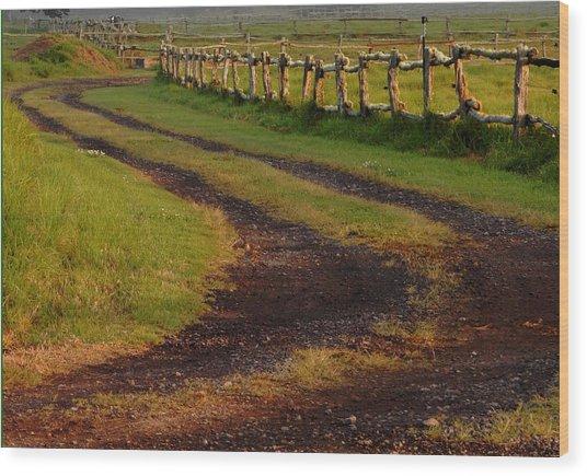 Long Dirt Road Wood Print