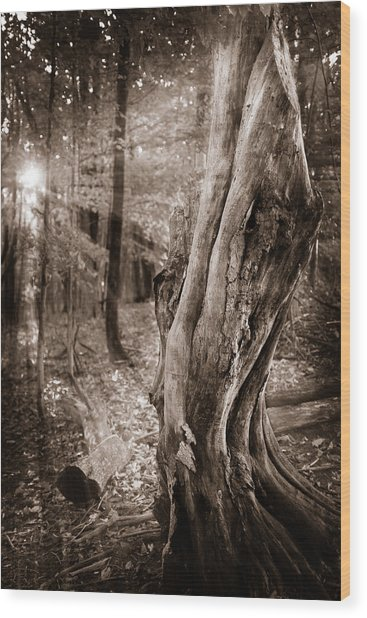 Long Forgotten Wood Print