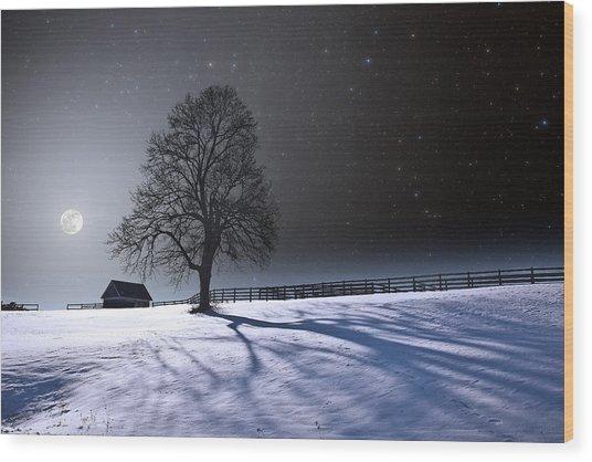 Long Moonrise Shadows Wood Print by Larry Landolfi