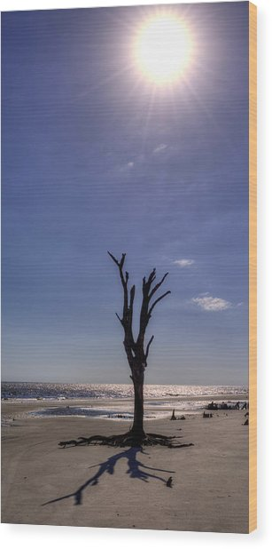 Long Shadow On Jekyll Island Wood Print