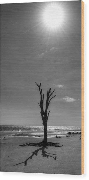 Long Shadow On Jekyll Island In Black And White Wood Print