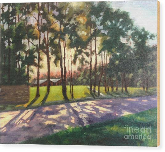 Long Shadows On Longmire  Wood Print