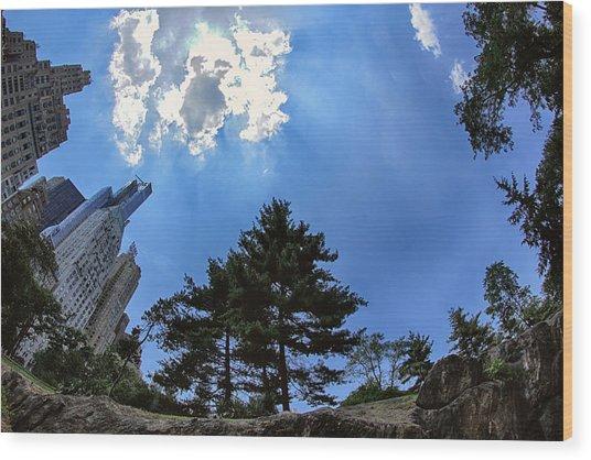 Long Way Up Wood Print