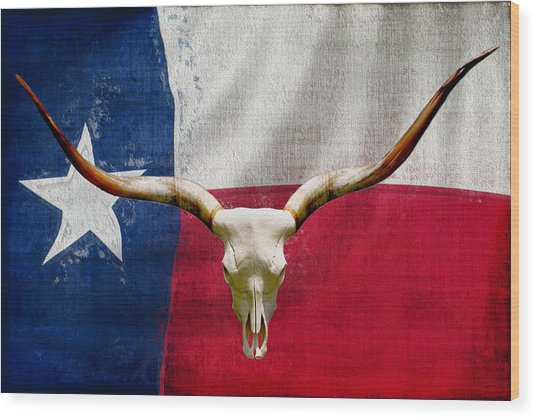 Longhorn Of Texas 2 Wood Print