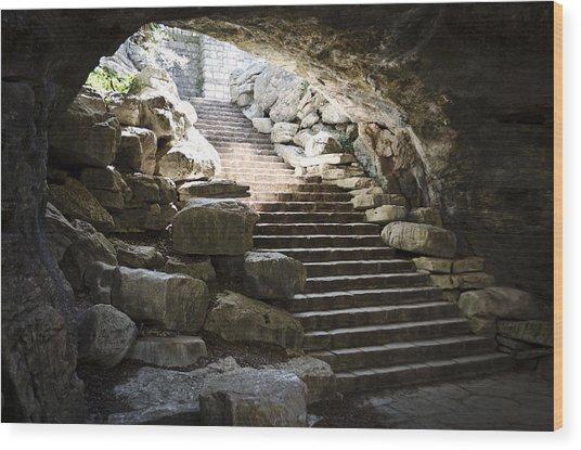Longhorn Stairs Wood Print