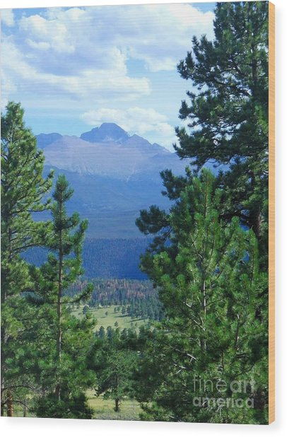 Longs Peak A Fourteener Wood Print by Stephen Schaps