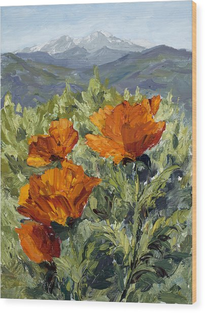 Longs Peak Poppies Wood Print