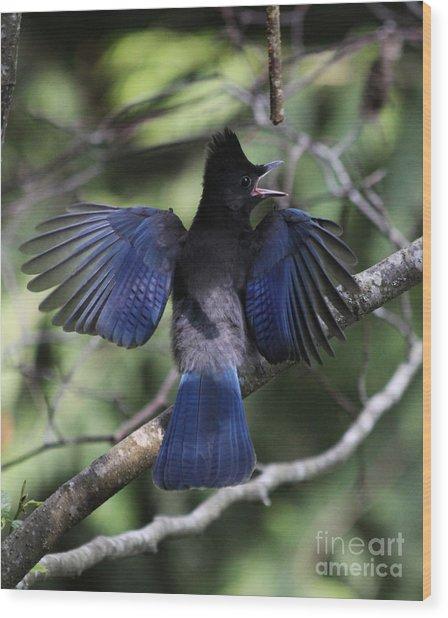 Look At My Wings Wood Print