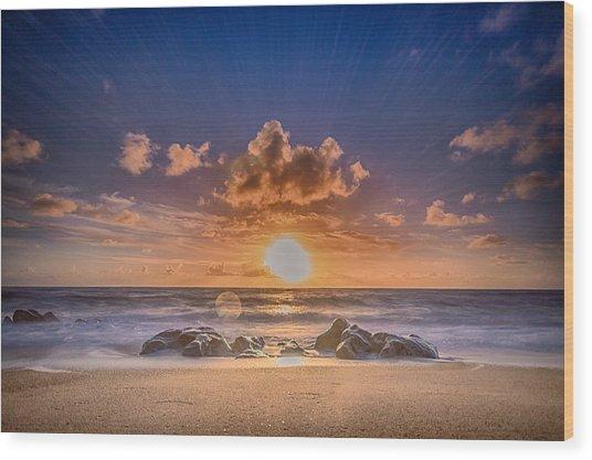 Looking At The Sun Wood Print