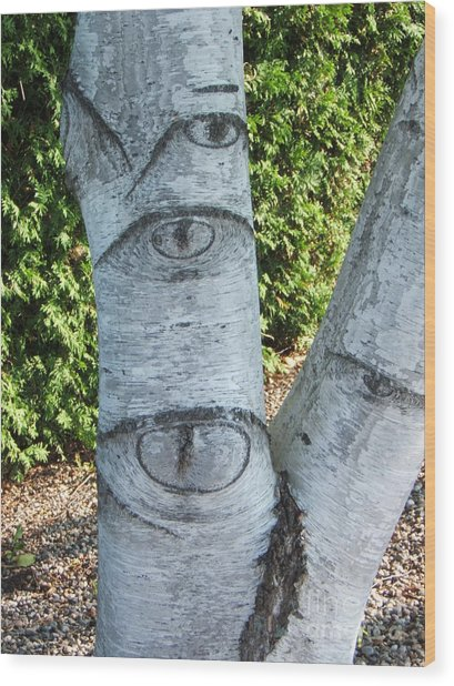 Looking At You Wood Print by Margaret McDermott