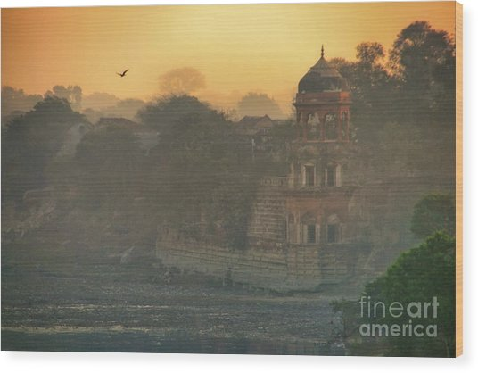 Looking Back From The Taj Mahal Wood Print