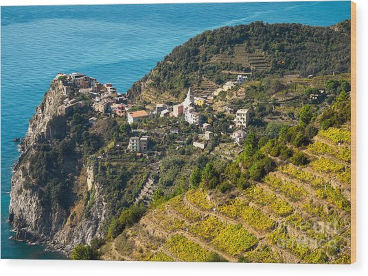 Looking Down Onto Corniglia Wood Print