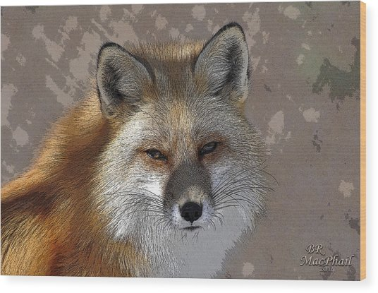 Looking Foxy Wood Print