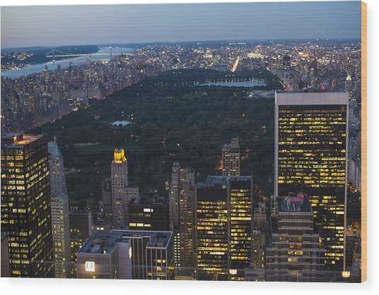 Looking From Top Of The Rock Wood Print