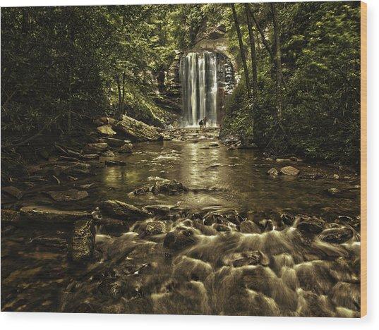 Looking Glass Falls Wood Print