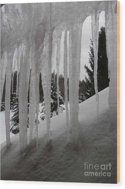 Looking Out The Window Wood Print by Margaret McDermott