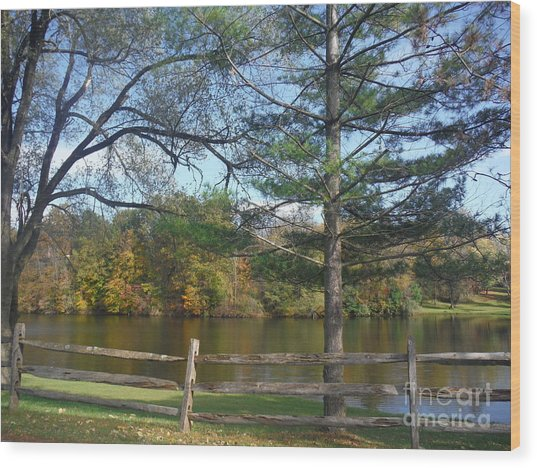 Looking Over The Pond Wood Print by Linda Walker