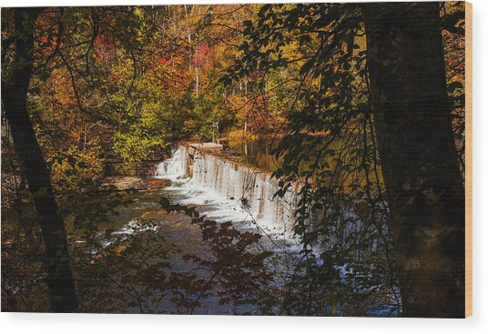 Looking Through Autumn Trees On To Waterfalls Fine Art Prints As Gift For The Holidays  Wood Print