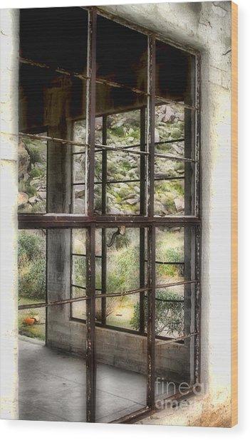 Looking Through The Window By Diana Sainz Wood Print