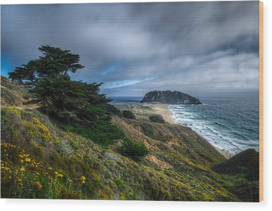 Looking Towards The Big Rock At Big Sur Wood Print