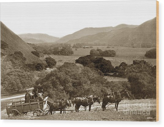 Looking Up The Carmel Valley California Circa 1880 Wood Print