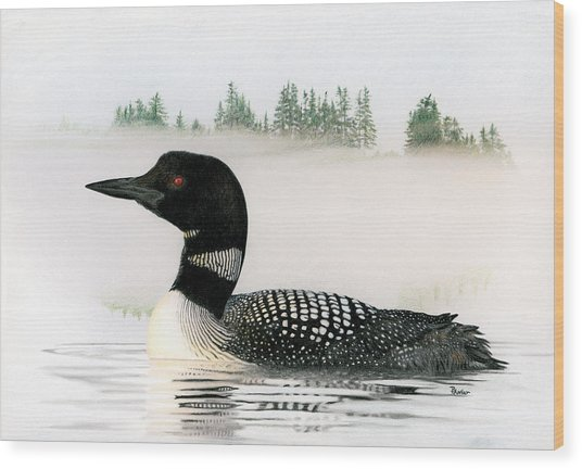 Loon In Fog Wood Print