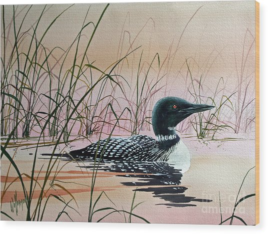 Loon Sunset Wood Print