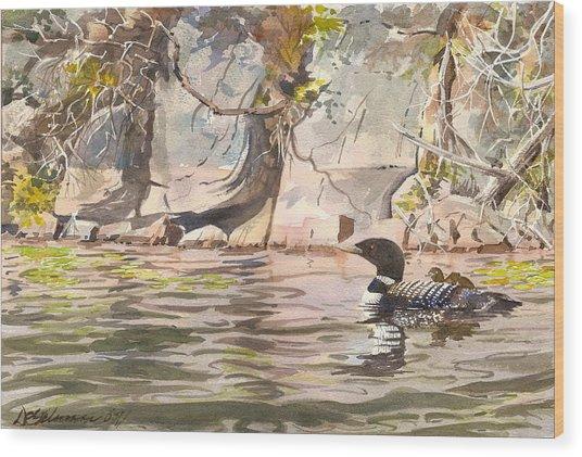 Loons At Eldrege's Rock Wood Print