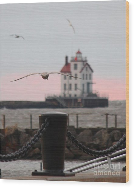 Lorain Lighthouse With Gulls Cropped Wood Print